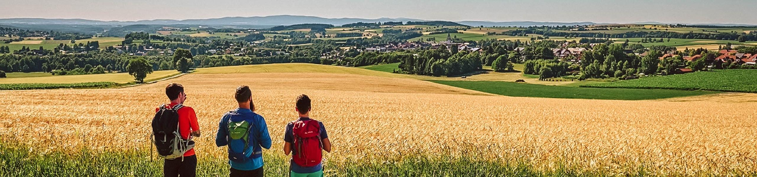 Blick auf Bärnau vom Nurtschweg aus