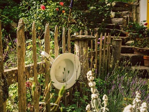 Zaun und Blumen im Garten