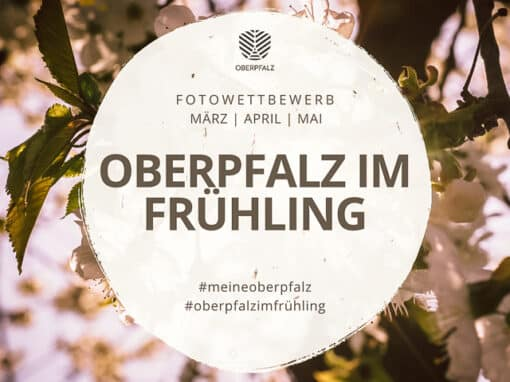 Fotowettbewerb #meineoberpfalz – Oberpfalz im Frühling